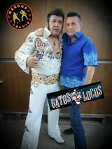 MARCOS ELVIS & FERNANDO LAVADO(GATOS LOCOS)